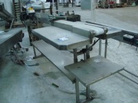 Conveyor 2. 500mmx120 mm with auxiliary trays in stainless steel